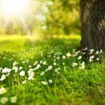 Protección contra el sol para personas mayores