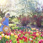 3 consejos para personas mayores al preparar el jardín para el verano