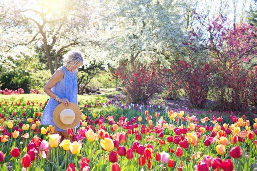 3 X Consejos para preparar el jardín para el verano